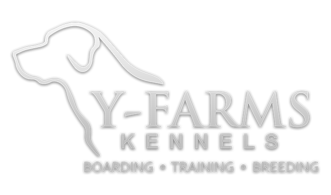 Y-Farms Kennels