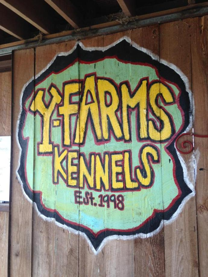 Welcome to Y-Farms Kennels