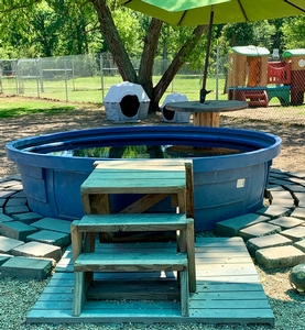 Outdoor Large dog pool & play yard