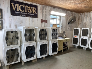 Our training room has 20 Ruffland Kennels